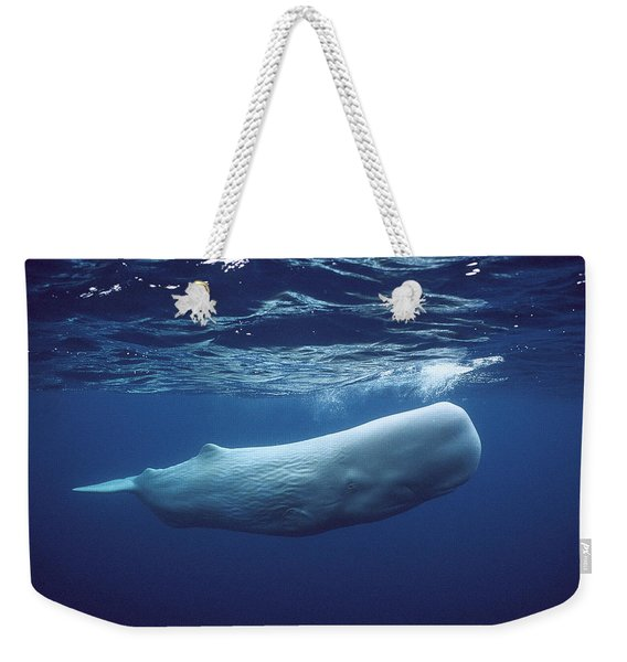 Sperm Whale Physeter Macrocephalus Weekender Tote Bag