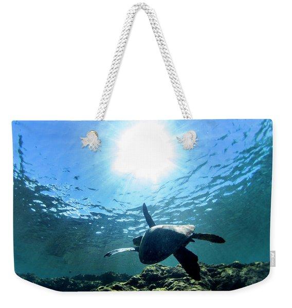 Turtles View Weekender Tote Bag