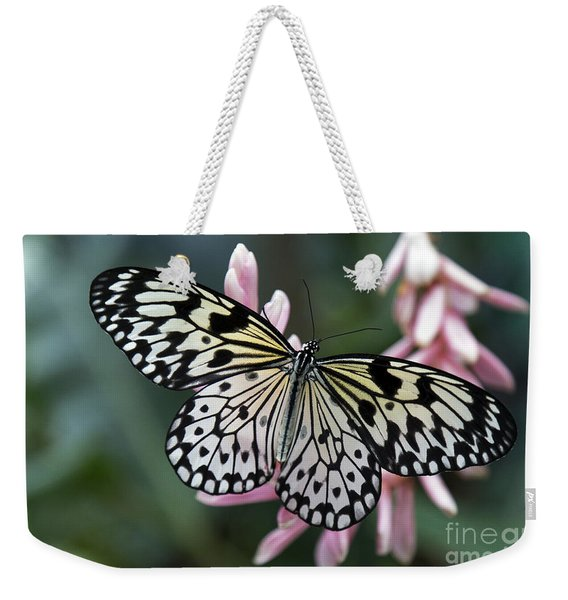 White Tree Nymph Butterfly Weekender Tote Bag