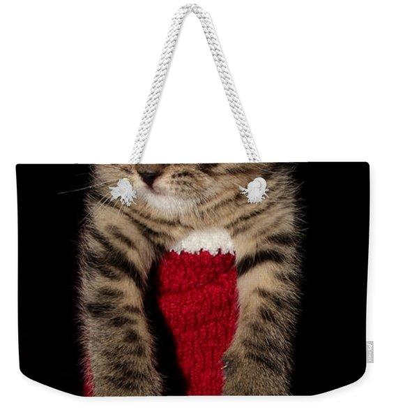 2010 Stocking Cat 2 Weekender Tote Bag