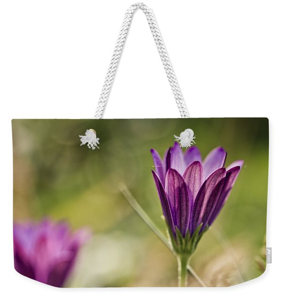Flower On Summer Meadow Weekender Tote Bag