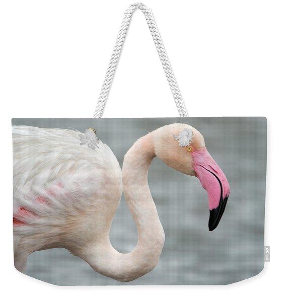 Greater Flamingo Phoenicopterus Roseus Weekender Tote Bag