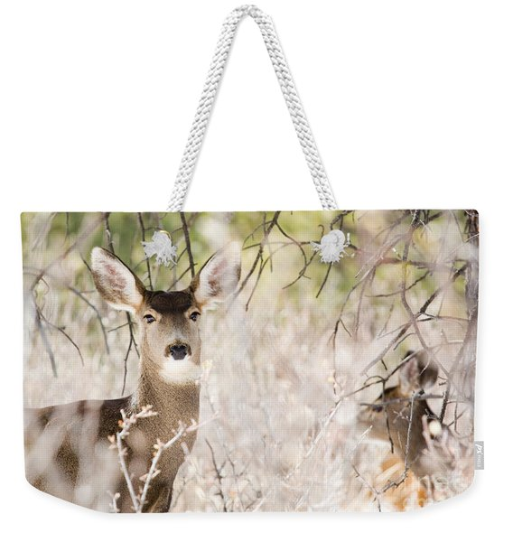 Herd Of Mule Deer In Deep Snow Weekender Tote Bag