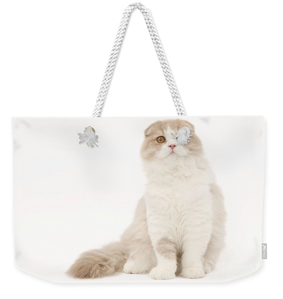 Highland Fold Cat Weekender Tote Bag
