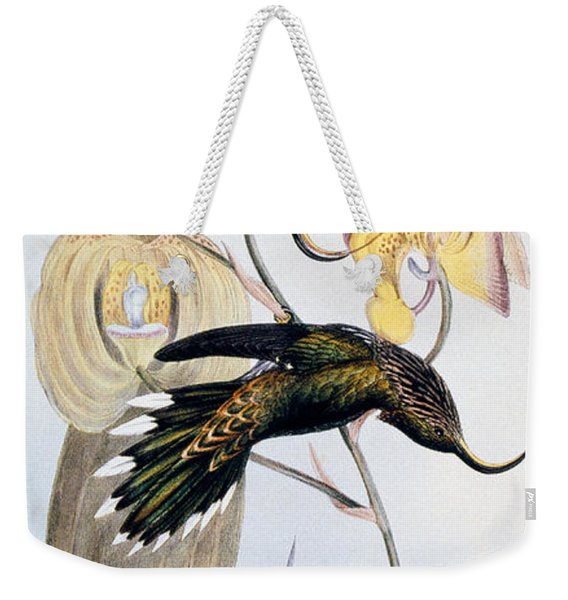 Hummingbirds Weekender Tote Bag