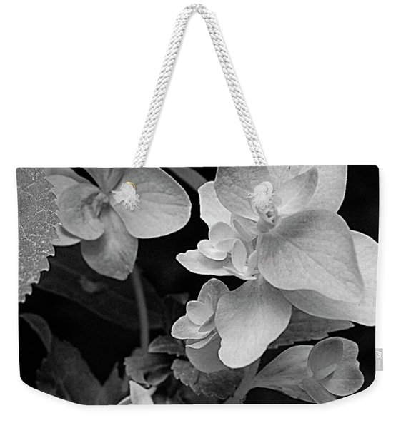 Magnolia Plantation And Gardens Collection Weekender Tote Bag