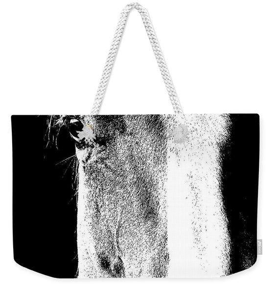 Palomino Sketch Weekender Tote Bag