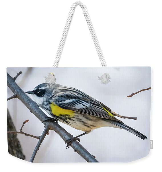 Yellow-rumped Warbler  Weekender Tote Bag