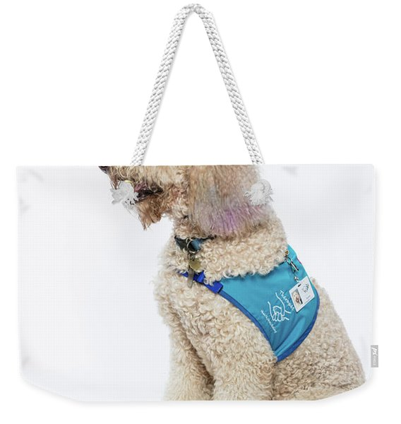 3010.057 Therapet Weekender Tote Bag