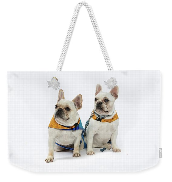 3010.062 Therapet Weekender Tote Bag