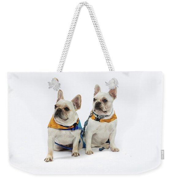 3010.062 Therapet Weekender Tote Bag