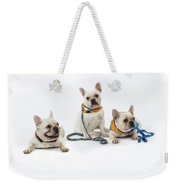 3010.064 Therapet Weekender Tote Bag