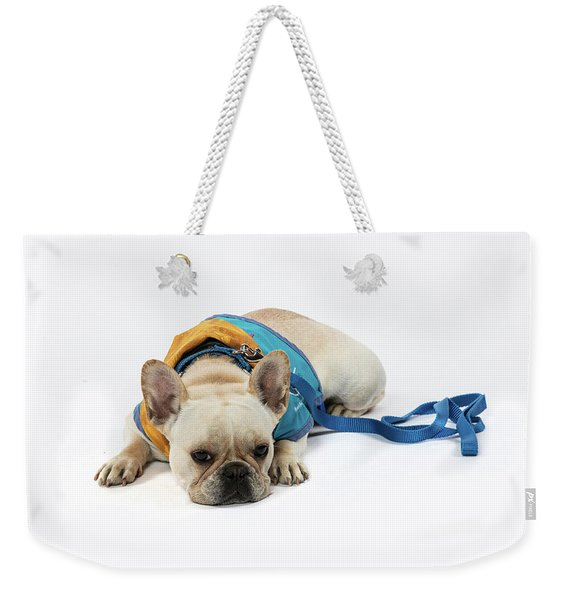 3010.066 Therapet Weekender Tote Bag