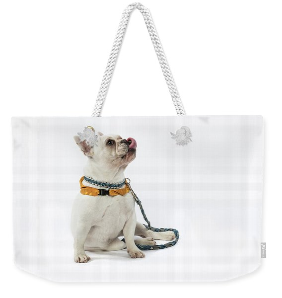 3010.067 Therapet Weekender Tote Bag