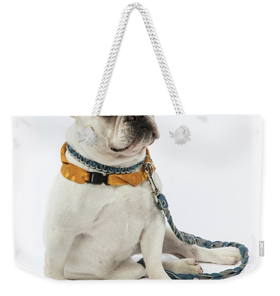 3010.068 Therapet Weekender Tote Bag