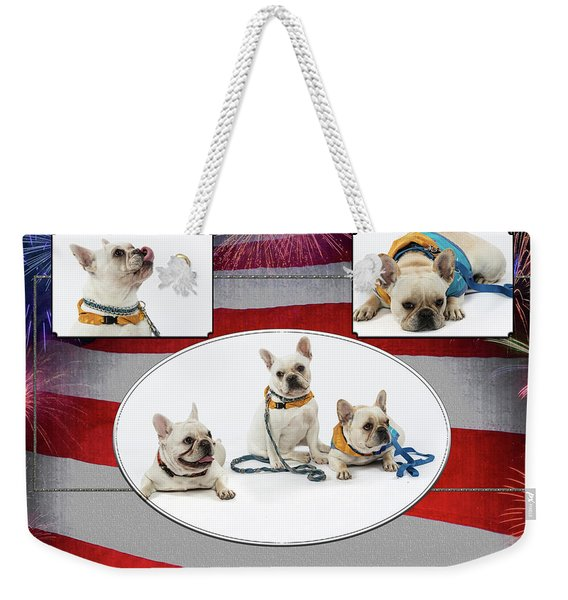 3010.069 Therapet Weekender Tote Bag