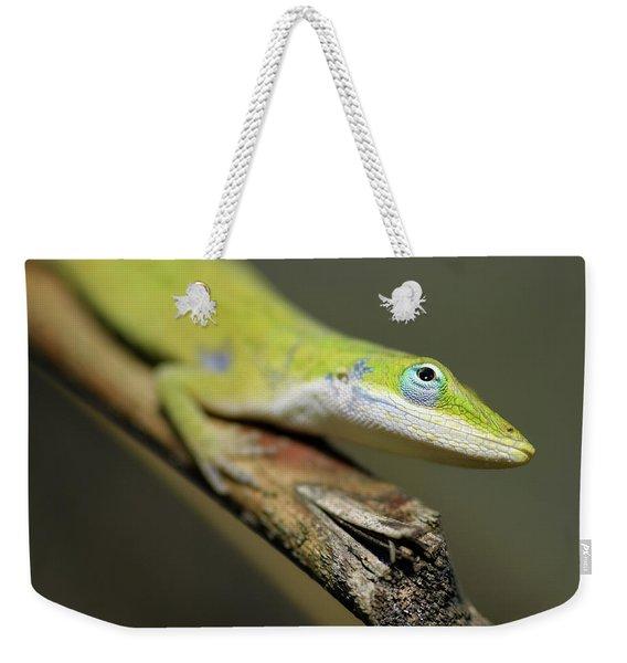 Anole Weekender Tote Bag