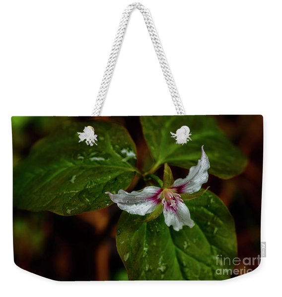 Painted Trillium  Weekender Tote Bag