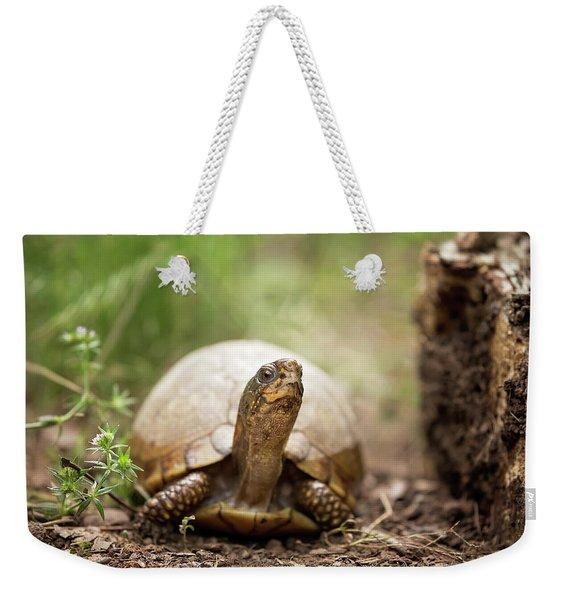 Turtle Town Weekender Tote Bag