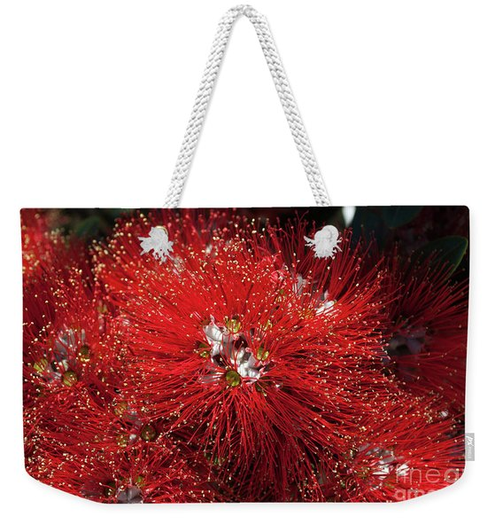 Pohutukawa Tree Flowers Weekender Tote Bag