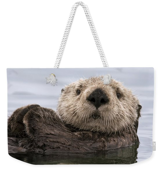 Sea Otter Elkhorn Slough Monterey Bay Weekender Tote Bag