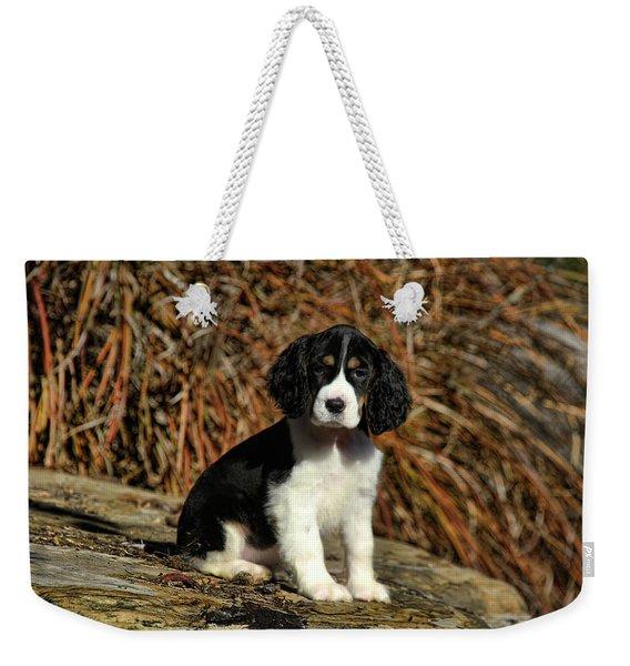 Springer Puppies Weekender Tote Bag