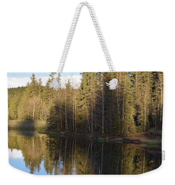 Shadow Reflection Kiddie Pond Divide Co Weekender Tote Bag