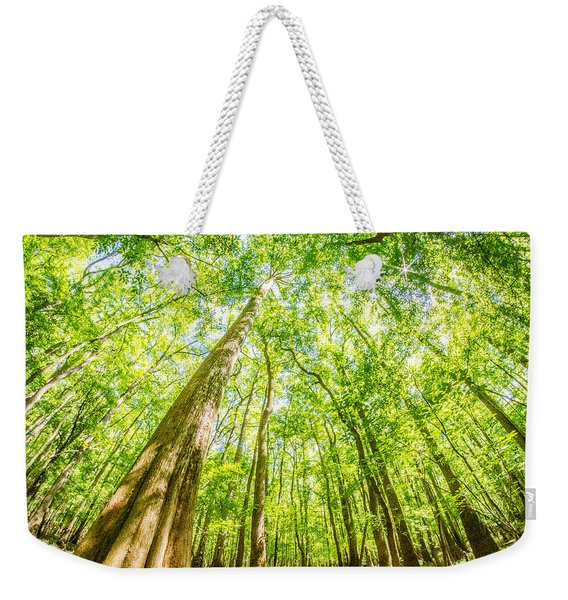 cypress forest and swamp of Congaree National Park in South Caro Weekender Tote Bag