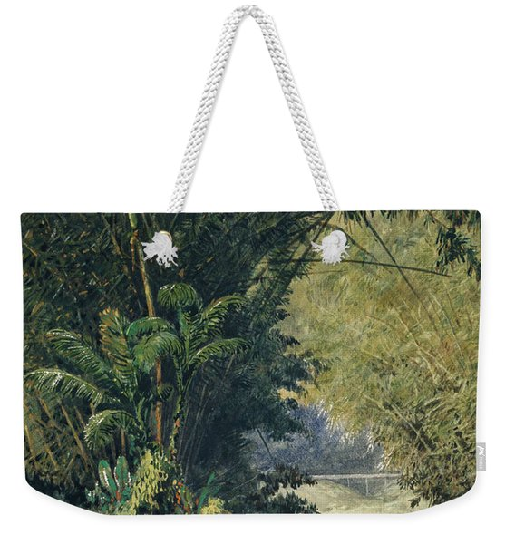 A Bamboo Grove In Trinidad Weekender Tote Bag