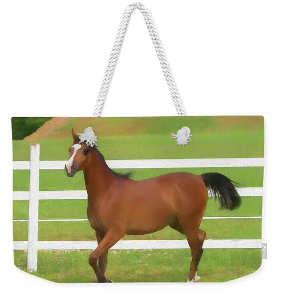 A Beautiful Arabian Filly In The Pasture. Weekender Tote Bag