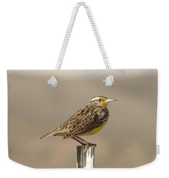 A Beautiful Meadowlark Weekender Tote Bag