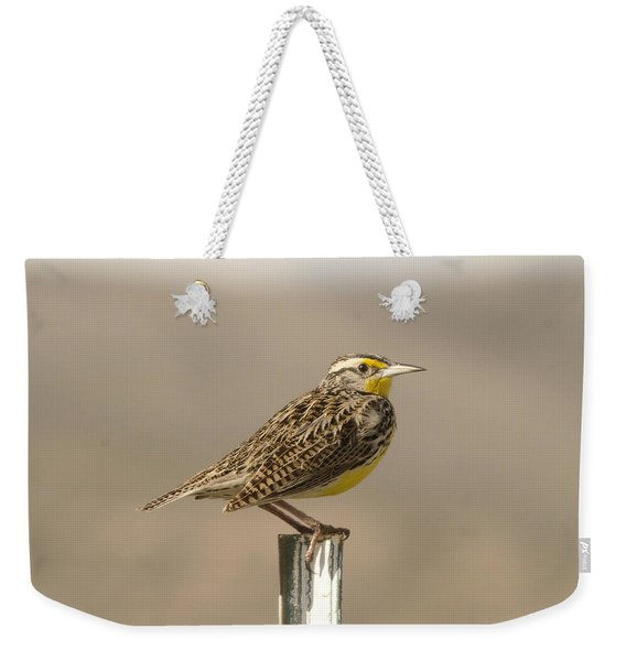 A Beautiful Meadowlark Weekender Tote Bag
