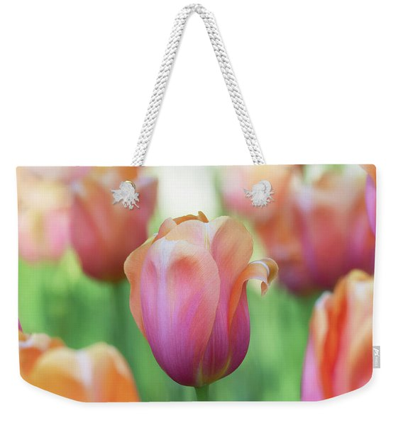 A Bed Of Tulips Is A Feast For The Eyes. Weekender Tote Bag