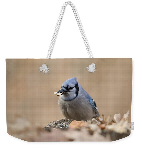 A Blue Jay Cyanocitta Cristata Finds Weekender Tote Bag