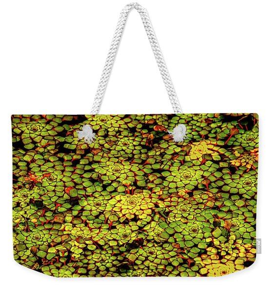 A Botanical Mosaic Weekender Tote Bag