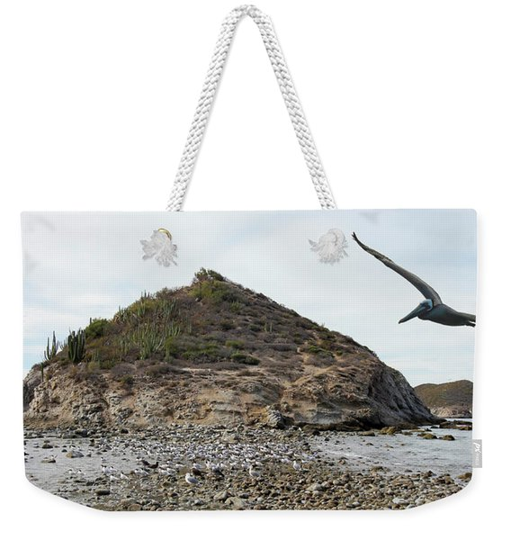 A Brown Pelican Does A Flyby Of A Cactus Covered Desert Island  Weekender Tote Bag