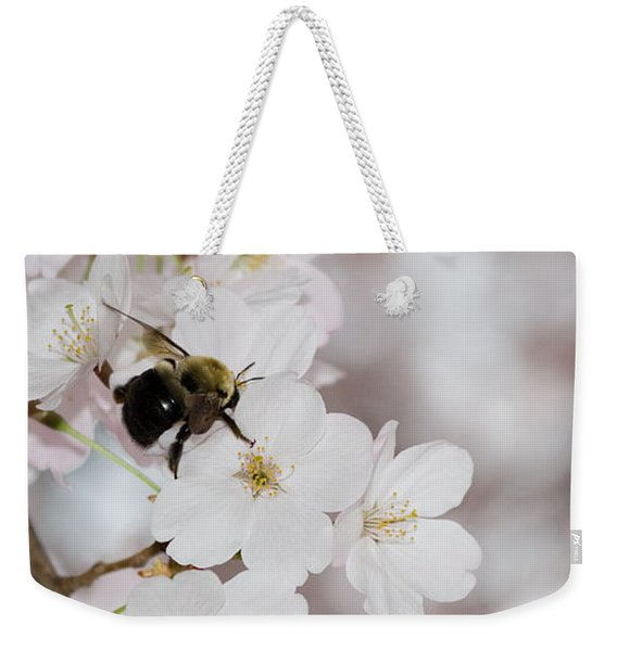 A Bumblebee Pollinates A Cherry Blossom Weekender Tote Bag