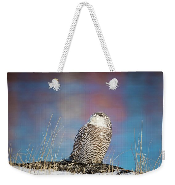 A Colorful Snowy Owl Weekender Tote Bag