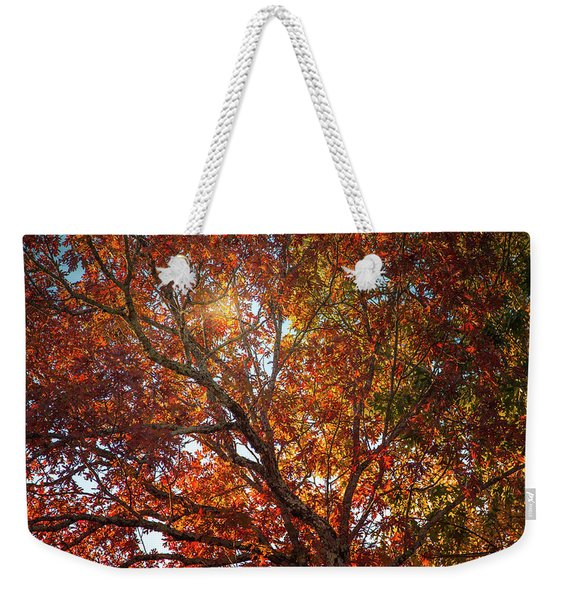 A Colorful Tree In Autumn Weekender Tote Bag