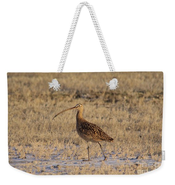 A Curlew Taking A Walk Weekender Tote Bag