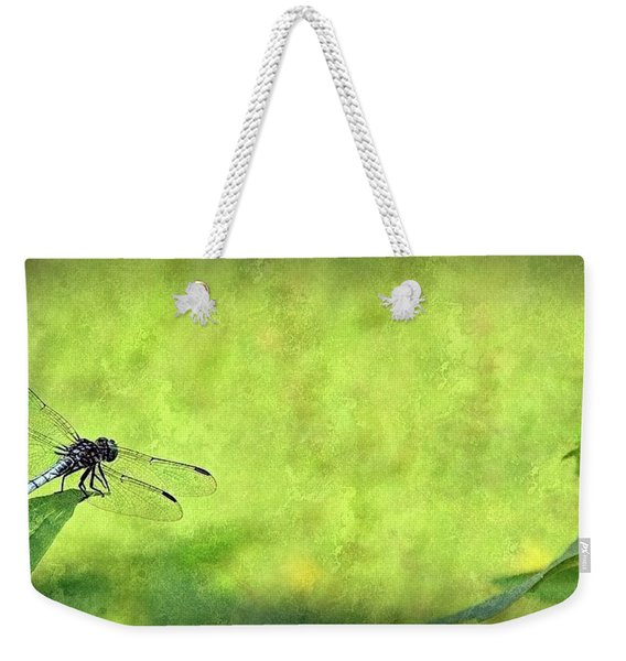 A Day In The Swamp Weekender Tote Bag