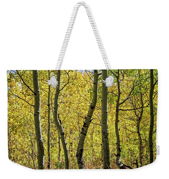 A Day In The Woods Weekender Tote Bag