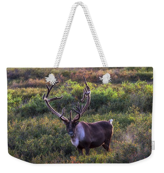 A Denali Icon Weekender Tote Bag