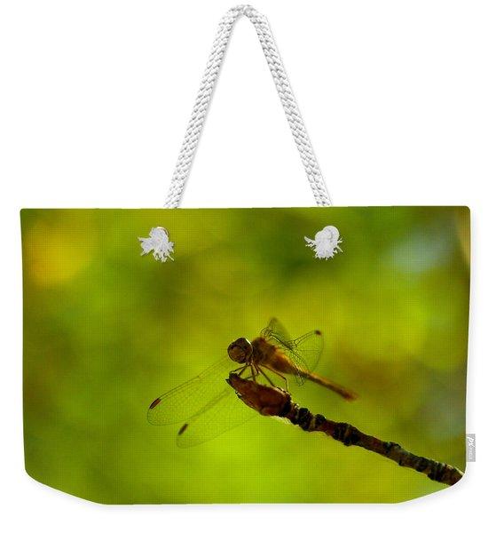A Dragonfly Smile Weekender Tote Bag