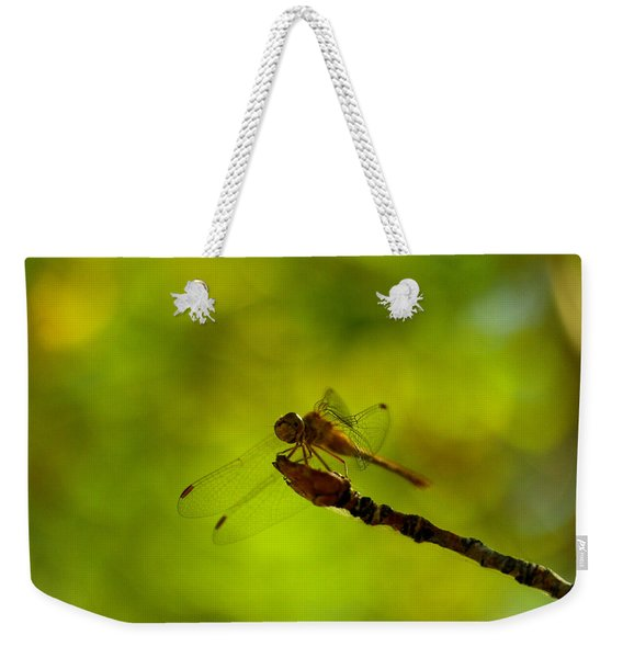 A Dragonfly Smile Weekender Tote Bag