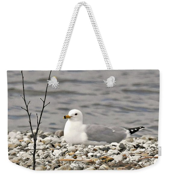 A Few Moments Of Peace Weekender Tote Bag