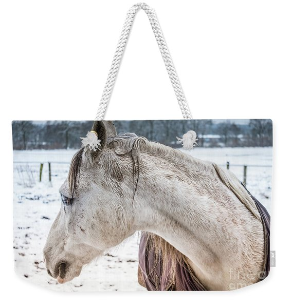 A Girlfriend Of The Horse Amigo Weekender Tote Bag