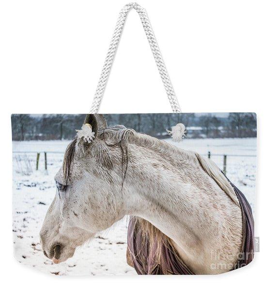 A Girlfriend Of The Horse Amigo Weekender Tote Bag