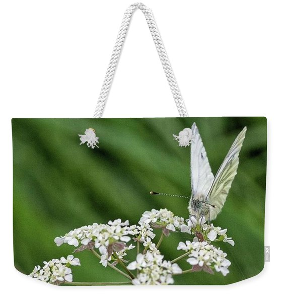 A Green-veined White (pieris Napi) Weekender Tote Bag
