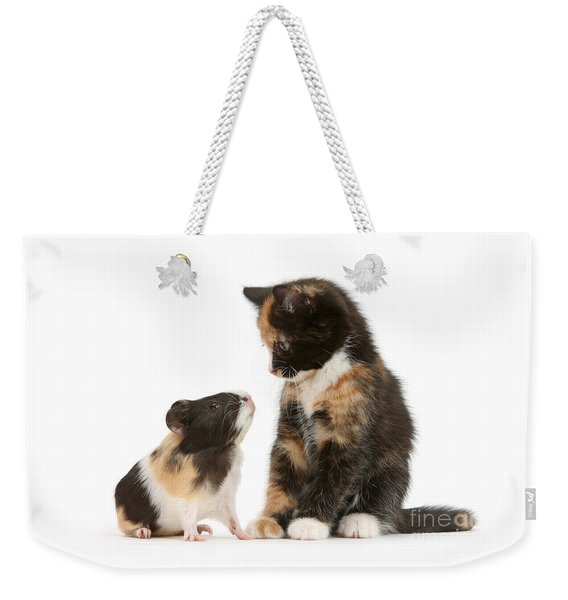 A Guinea For Your Thoughts Weekender Tote Bag